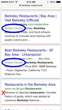 Search Results on a mobile phone