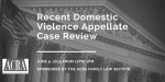 Recent DV Case Review