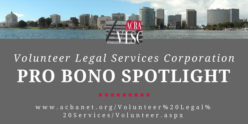 VLSC Pro Bono Spotlight
