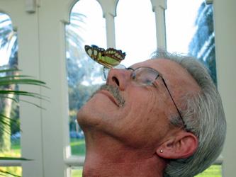 steven-c-dimick-butterfly